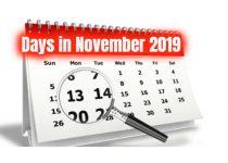 How many days in november 2019